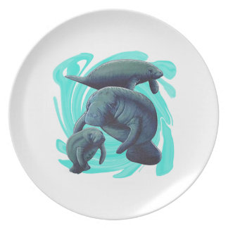 FOR THE FAMILY PLATES