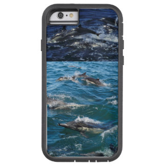 For the love of Dolphins Tough Xtreme iPhone 6 Case