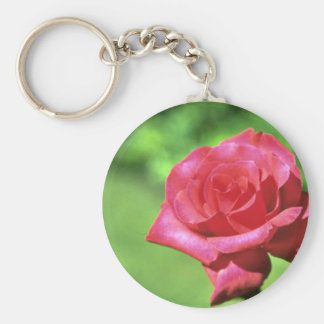 For The Love Of Light Key Ring