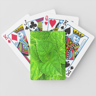 For the Love of Nature Bicycle Playing Cards