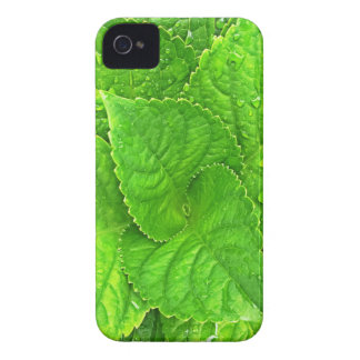 For the Love of Nature iPhone 4 Case-Mate Cases