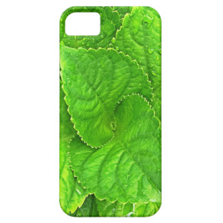 For the Love of Nature iPhone 5 Covers