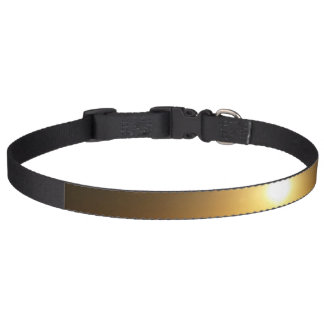 For the Pet Pet Collar