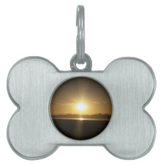 For the Pet Pet ID Tag
