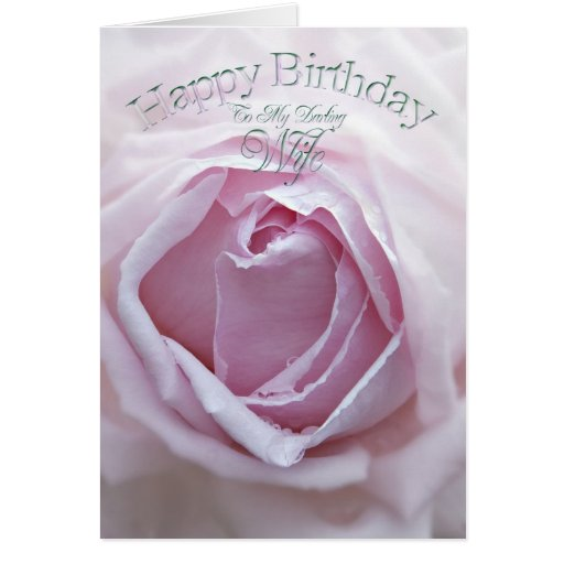 for Wife, a beautiful pink rose Cards