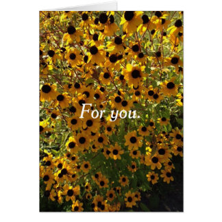 For you Black Eyed Susan Flowers Greeting Cards