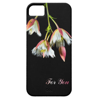 For You iPhone 5 Covers