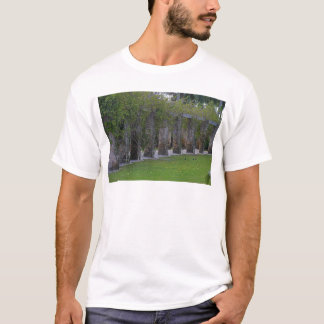 Forbidden Disclosure T-Shirt