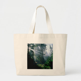 Forest A Wonder In Woods Canvas Bag