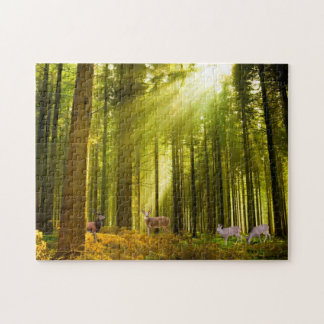 Forest and Deer image  Photo-Puzzle-with-Gift-Box Puzzle
