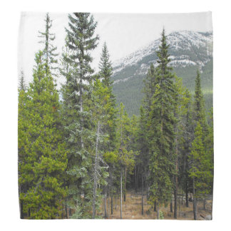 Forest and Mountain Scene Bandana