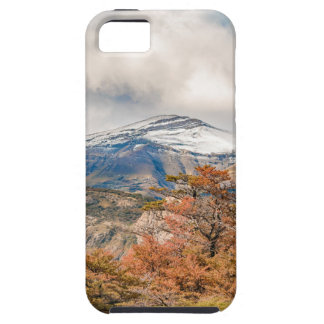 Forest and Snowy Mountains, Patagonia, Argentina Case For The iPhone 5