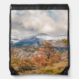 Forest and Snowy Mountains, Patagonia, Argentina Drawstring Bag