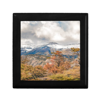 Forest and Snowy Mountains, Patagonia, Argentina Gift Box