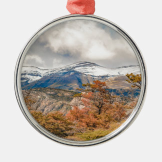 Forest and Snowy Mountains, Patagonia, Argentina Metal Ornament