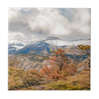 Forest and Snowy Mountains, Patagonia, Argentina Tile