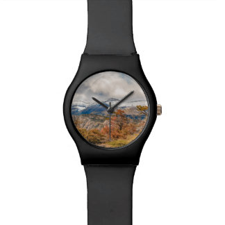 Forest and Snowy Mountains, Patagonia, Argentina Watch