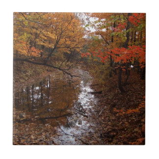 FOREST AT AUTOMN WITH WATER SMALL SQUARE TILE
