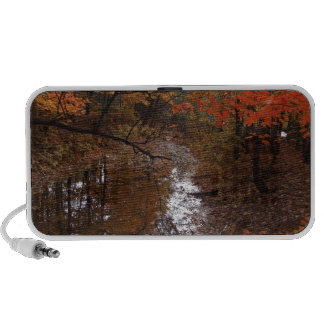 FOREST AT AUTOMN WITH WATER PC SPEAKERS