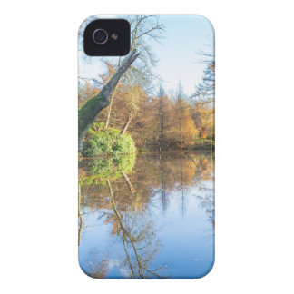 Forest autumn landscape with pond iPhone 4 case
