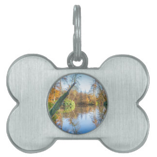 Forest autumn landscape with pond pet tag