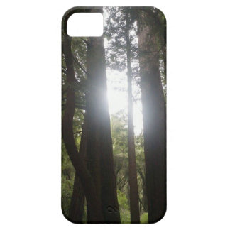 Forest Beauty iPhone 5 Cases