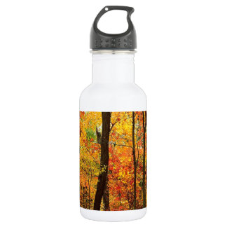 Forest Crimson Appalachian Mountains 532 Ml Water Bottle