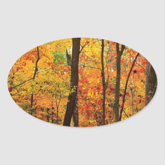 Forest Crimson Appalachian Mountains Oval Stickers
