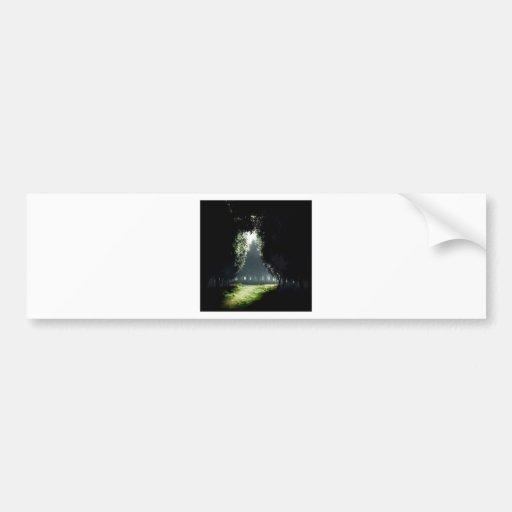 Forest Darkness To Light Bumper Sticker