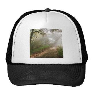 Forest Douglas Family Preserve Santa Barbara Mesh Hats
