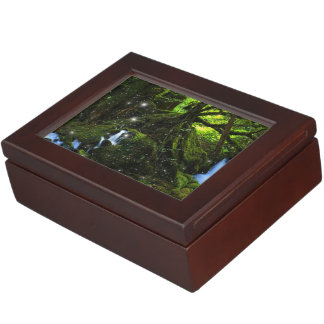 Forest Dreams Memory Boxes