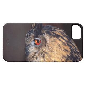 Forest Eagle Owl, Bubo bubo, Native to Eurasia Barely There iPhone 5 Case