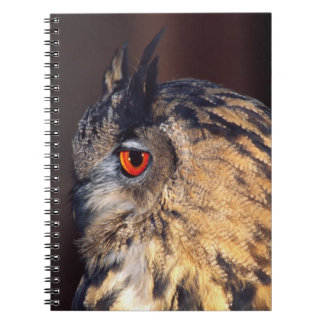 Forest Eagle Owl, Bubo bubo, Native to Eurasia Spiral Notebook