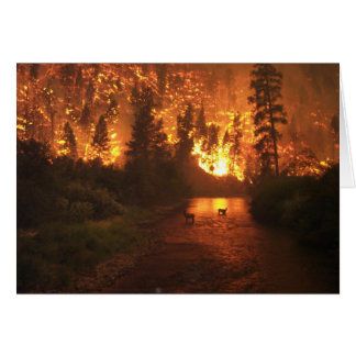 Forest Fire - Deer Greeting Card