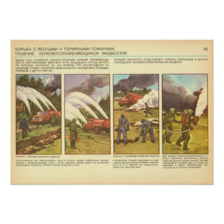 forest fires poster