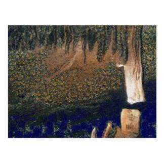 Forest floating on water reservoir postcard