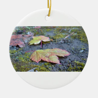 Forest Floor Ornament