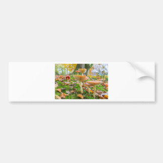 Forest floor with fly agarics and leaves in fall bumper sticker