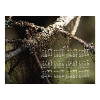 Forest Fuzz 2013 Calendar Photo Art
