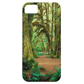 Forest Hall Of Mosses Olympic iPhone 5 Cover