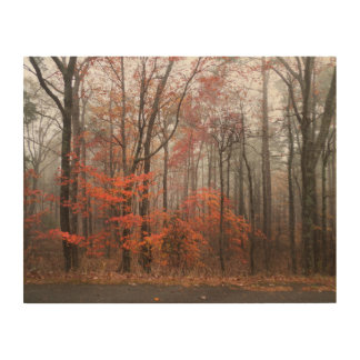 Forest in Autumn Wood Wall Art