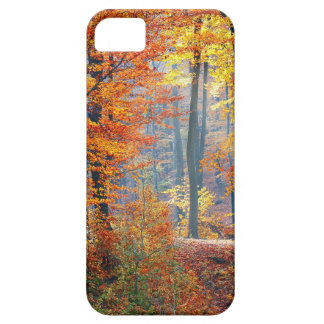 Forest in the Fall iPhone 5 Case