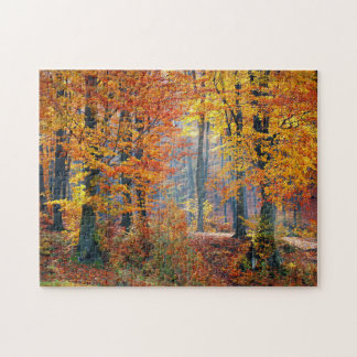 Forest in the Fall Jigsaw Puzzle