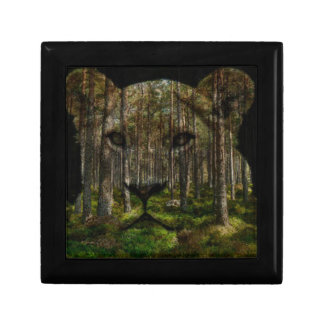 Forest inside a tiger gift box