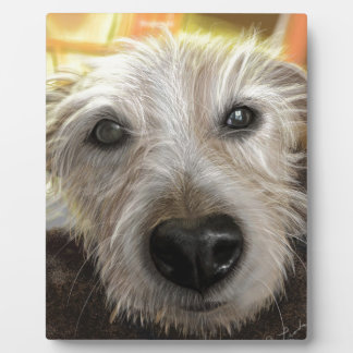 Forest  Jack Russell dog Plaque