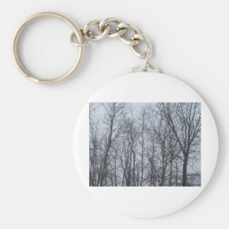 forest.jpg keychains