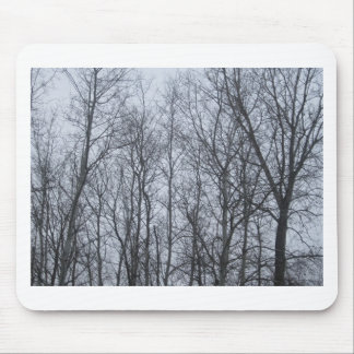 forest jpg mousepad