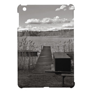 Forest Lake in Black and White iPad Mini Cases