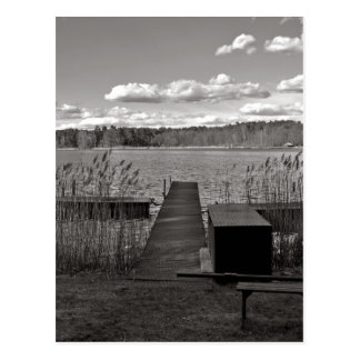 Forest Lake in Black and White Postcard