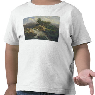 Forest Landscape with Waterfall Tees